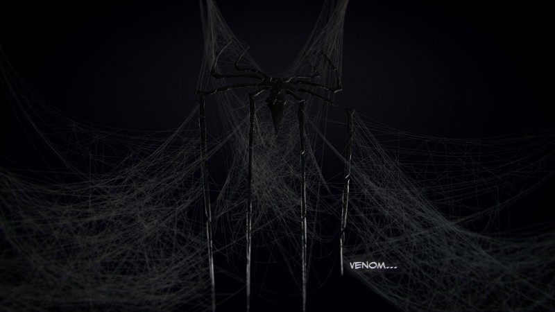 ns_SpiderWeb